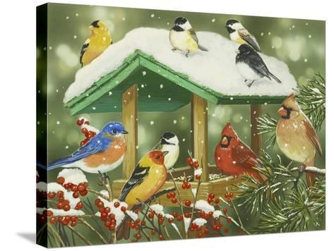 Winter Treats-William Vanderdasson-Stretched Canvas Print
