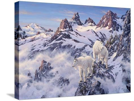 Among the Clouds - Mtn. Goat-Jeff Tift-Stretched Canvas Print