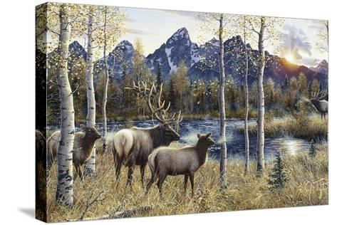 Autumn Rival-Jeff Tift-Stretched Canvas Print