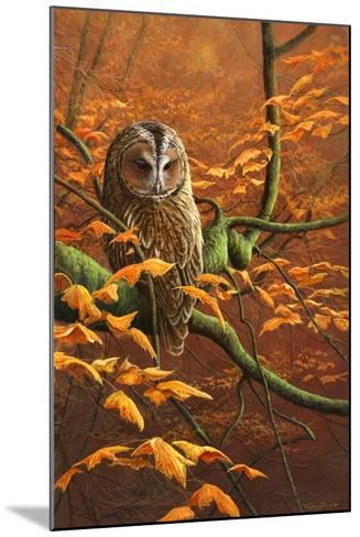 Autumn Tawny Owl-Jeremy Paul-Mounted Giclee Print