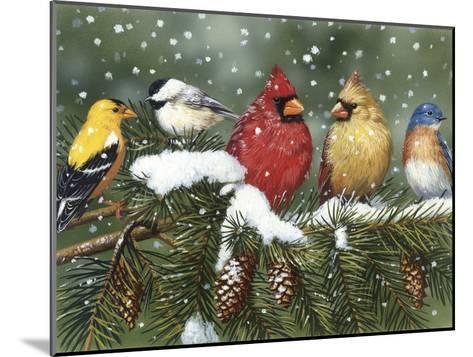 Backyard Birds on Snowy Branch-William Vanderdasson-Mounted Giclee Print