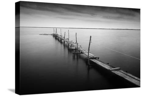 3 Palos-Moises Levy-Stretched Canvas Print