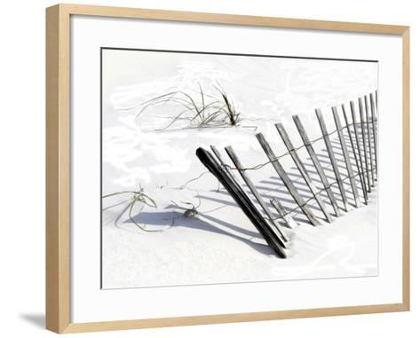 Beach Fence I-Karen Williams-Framed Art Print