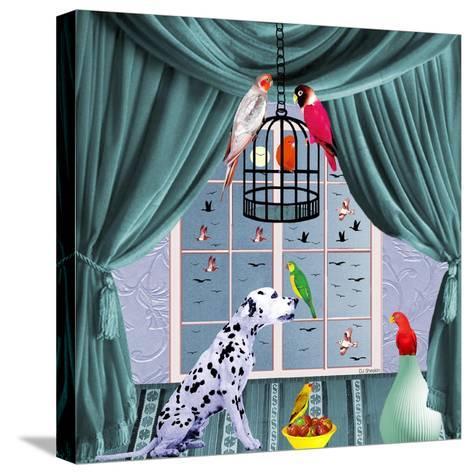 Bird Dogs VIII-David Sheskin-Stretched Canvas Print