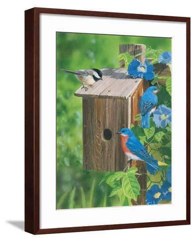 Birds at the Feeder (Bluebirds)-William Vanderdasson-Framed Art Print