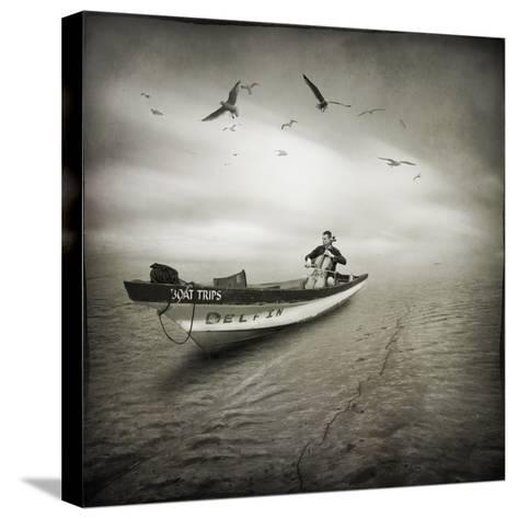 Cello Sophia-Moises Levy-Stretched Canvas Print