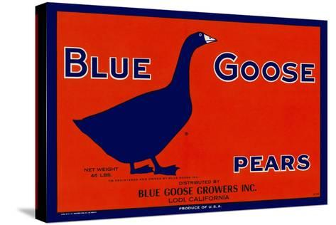 Blue Goose Pears--Stretched Canvas Print