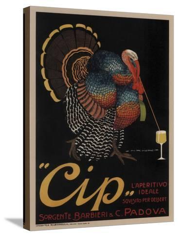 Cip Padova Turkey--Stretched Canvas Print