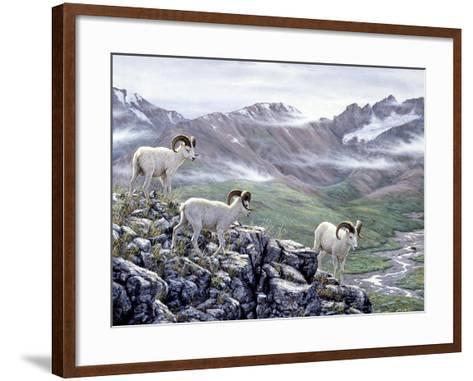 Dall Sheep at Denali-Jeff Tift-Framed Art Print