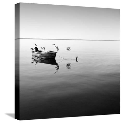 Boat and Heron II-Moises Levy-Stretched Canvas Print