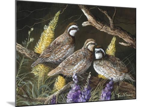 Bobwhite Trio 1-Trevor V. Swanson-Mounted Giclee Print