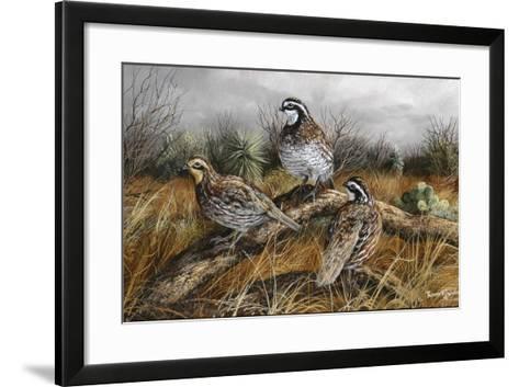 Bobwhite Trio 2-Trevor V. Swanson-Framed Art Print