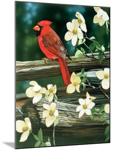 Cardinal-William Vanderdasson-Mounted Giclee Print