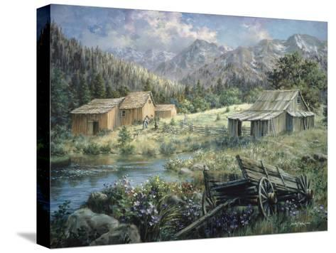 Country-Nicky Boehme-Stretched Canvas Print