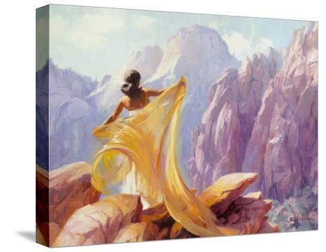 Dream Catcher-Steve Henderson-Stretched Canvas Print