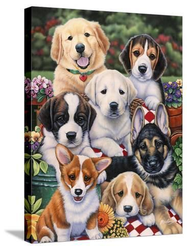 Garden Puppies-Jenny Newland-Stretched Canvas Print