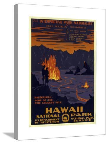 Hawaii National Park--Stretched Canvas Print
