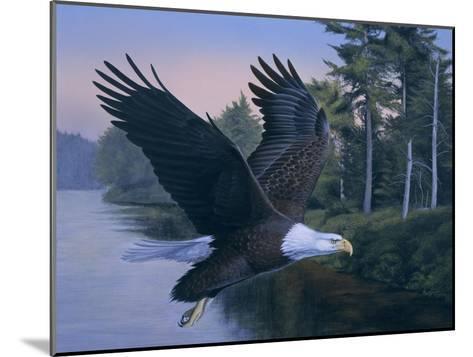 Eagle Soaring-Rusty Frentner-Mounted Giclee Print