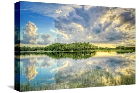 Everglades Sunset-Dennis Goodman-Stretched Canvas Print