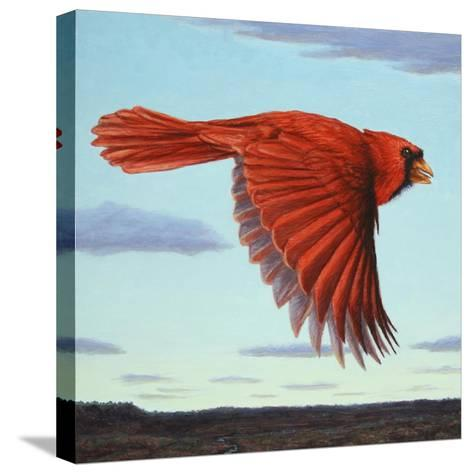Flight-James W. Johnson-Stretched Canvas Print
