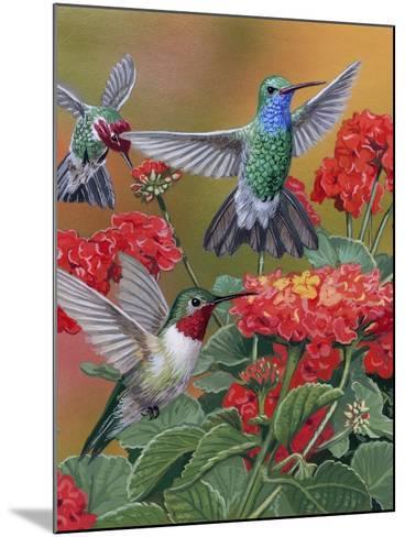 Hummingbirds and Flowers-William Vanderdasson-Mounted Giclee Print