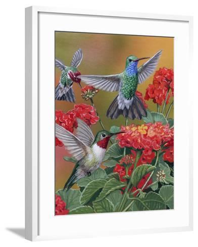 Hummingbirds and Flowers-William Vanderdasson-Framed Art Print