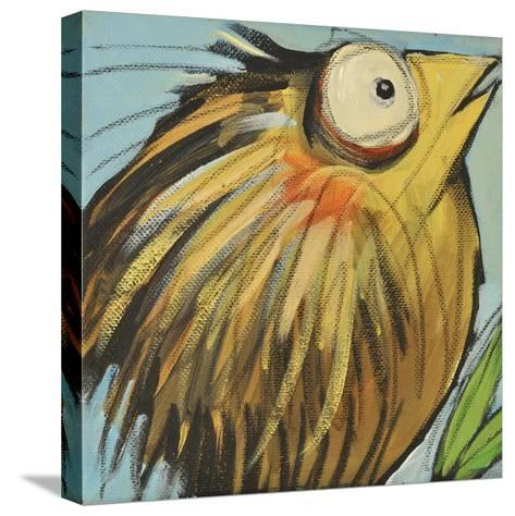 Feather Bird 25-Tim Nyberg-Stretched Canvas Print