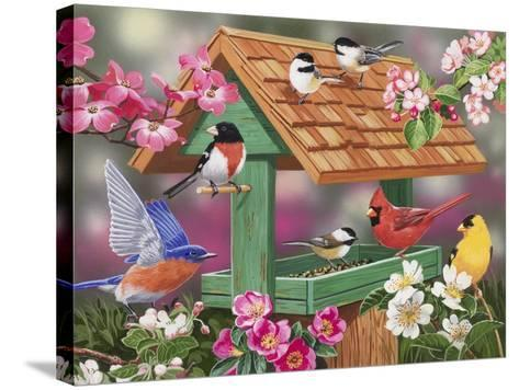 Feathers and Flowers-William Vanderdasson-Stretched Canvas Print