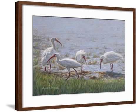 Ibis Excursion-Bruce Dumas-Framed Art Print