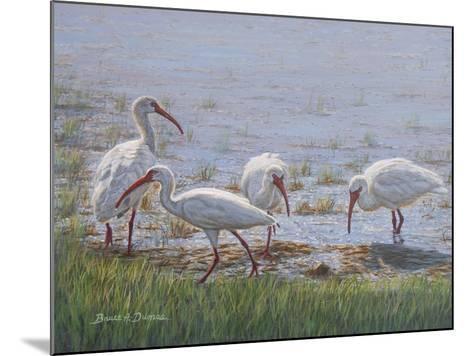 Ibis Excursion-Bruce Dumas-Mounted Giclee Print