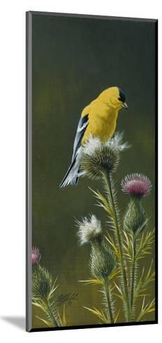 Goldfinch on Thistle-Wilhelm Goebel-Mounted Giclee Print