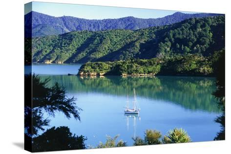 Marlborough Sound in New Zealand-Peter Adams-Stretched Canvas Print