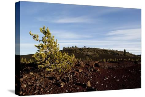 Volcanic Lava Fields, Craters of the Moon National Monument, Idaho-Paul Souders-Stretched Canvas Print