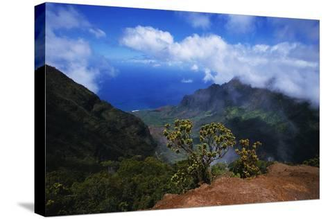 Hills along the Napali Coast-W^ Perry Conway-Stretched Canvas Print
