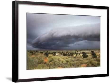 Storm Clouds Threaten the Kalahari, Kgalagadi Transfrontier Park in Summer, Northern Cape-Ann and Steve Toon-Framed Art Print