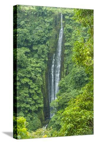 Papapapai-Tai Falls, Upolu, Samoa, South Pacific, Pacific-Michael Runkel-Stretched Canvas Print