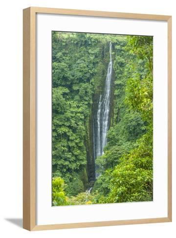 Papapapai-Tai Falls, Upolu, Samoa, South Pacific, Pacific-Michael Runkel-Framed Art Print