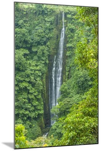 Papapapai-Tai Falls, Upolu, Samoa, South Pacific, Pacific-Michael Runkel-Mounted Photographic Print