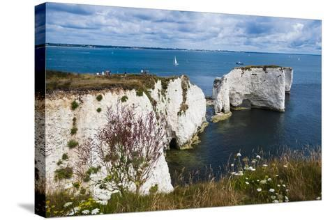 Chalk Stacks and Cliffs at Old Harry Rocks, Between Swanage and Purbeck, Dorset-Matthew Williams-Ellis-Stretched Canvas Print
