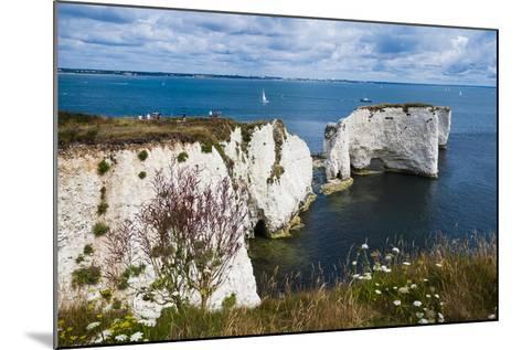 Chalk Stacks and Cliffs at Old Harry Rocks, Between Swanage and Purbeck, Dorset-Matthew Williams-Ellis-Mounted Photographic Print