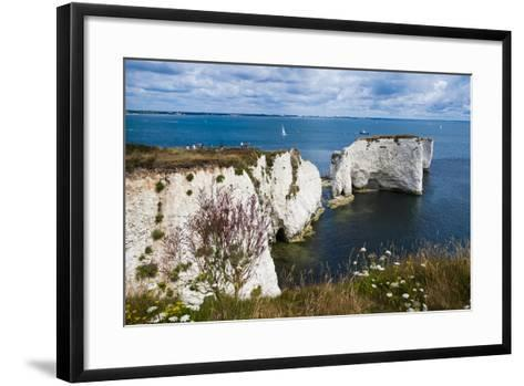 Chalk Stacks and Cliffs at Old Harry Rocks, Between Swanage and Purbeck, Dorset-Matthew Williams-Ellis-Framed Art Print