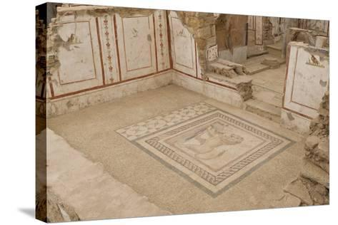 Lion Mosaic, Murals and Frescoes in a Terrace House, Curetes Street-Eleanor Scriven-Stretched Canvas Print