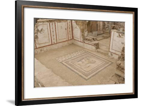 Lion Mosaic, Murals and Frescoes in a Terrace House, Curetes Street-Eleanor Scriven-Framed Art Print