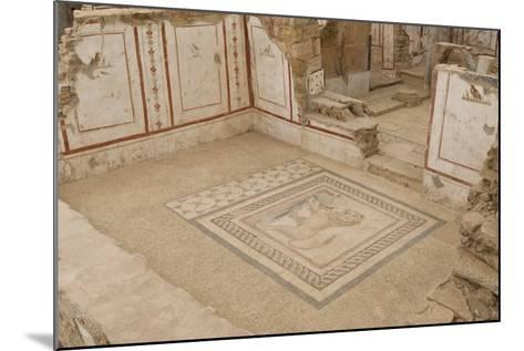 Lion Mosaic, Murals and Frescoes in a Terrace House, Curetes Street-Eleanor Scriven-Mounted Photographic Print