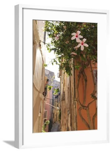 Narrow Street and Hibiscus Flowers, Old Town, Corfu Town-Eleanor Scriven-Framed Art Print