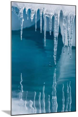 Icicles Mirrored in Calm Water from Ice Floating in the Neumayer Channel Near Wiencke Island-Michael Nolan-Mounted Photographic Print