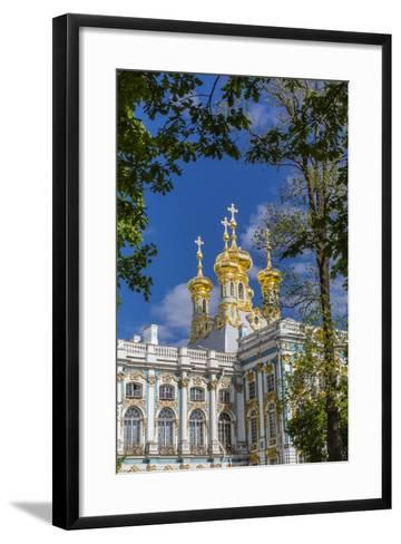 Exterior View of the Catherine Palace, Tsarskoe Selo, St. Petersburg, Russia, Europe-Michael Nolan-Framed Art Print