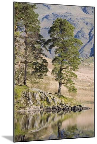 Early Morning Reflections, Blea Tarn, Above Little Langdale-Ruth Tomlinson-Mounted Photographic Print