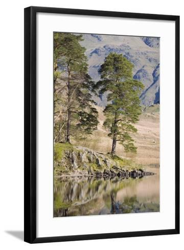 Early Morning Reflections, Blea Tarn, Above Little Langdale-Ruth Tomlinson-Framed Art Print