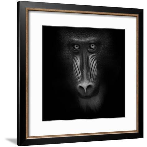 Eye Contact-Ruud Peters-Framed Art Print